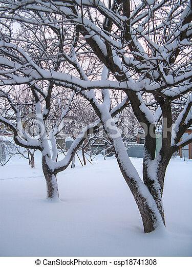 winter - csp18741308