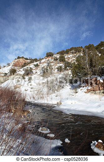 Winter Stream - csp0528036