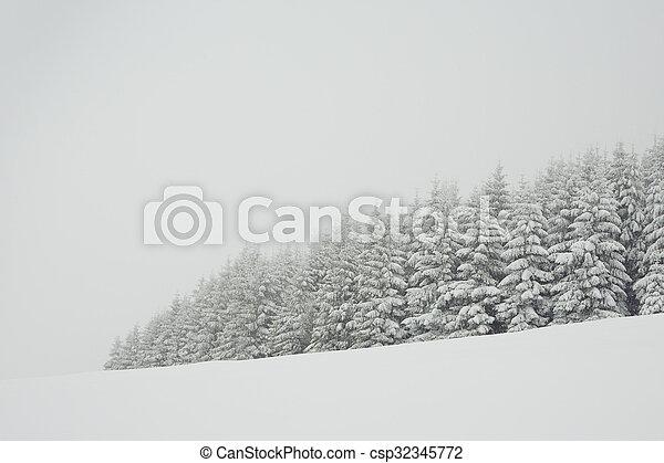 Winter time - csp32345772