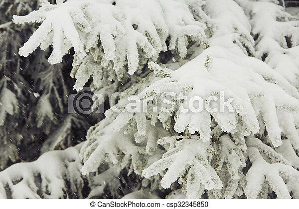 Winter time - csp32345850