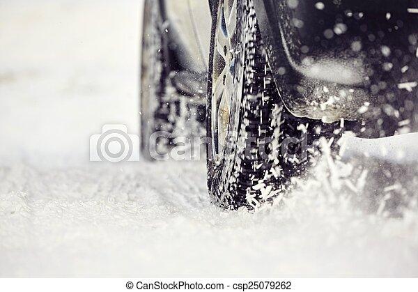 Winter tire - csp25079262