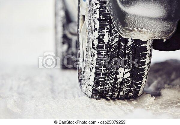 Winter tire - csp25079253