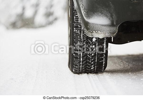 Winter tire - csp25079236