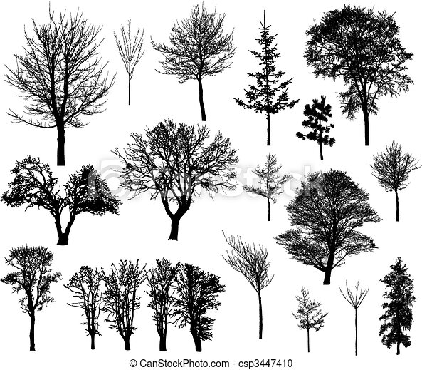 Winter tree silhouettes - csp3447410