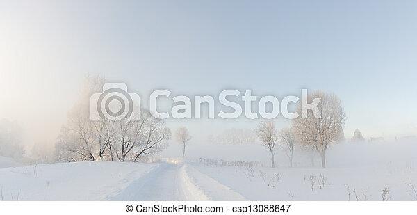winter trees in fog - csp13088647
