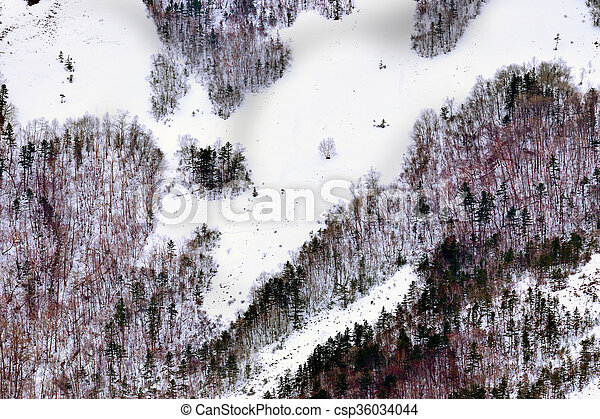 Winter trees in mountains - csp36034044