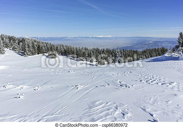 Winter wiew of Vitosha Mountain, Bulgaria - csp66380972