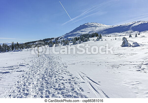 Winter wiew of Vitosha Mountain, Bulgaria - csp66381016
