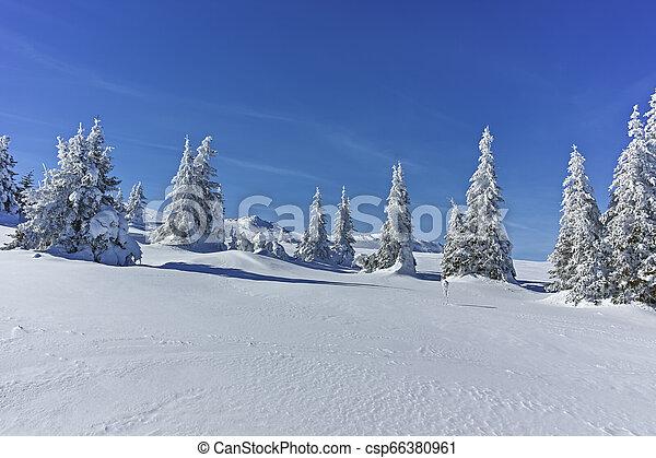 Winter wiew of Vitosha Mountain, Bulgaria - csp66380961