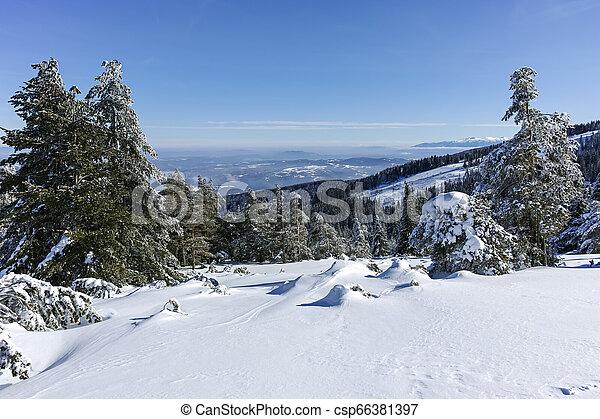 Winter wiew of Vitosha Mountain, Bulgaria - csp66381397
