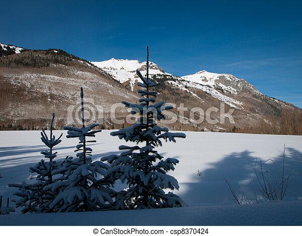 Winter Wonderland - csp8370424