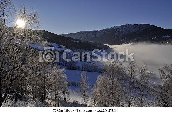 winterlandscape in morningsun - csp5981034
