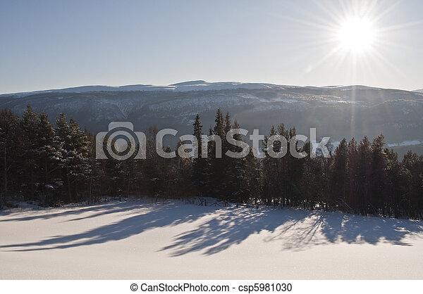 winterlandscape in sunshine - csp5981030