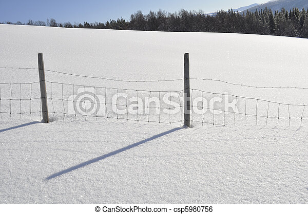 winterlandscape - csp5980756