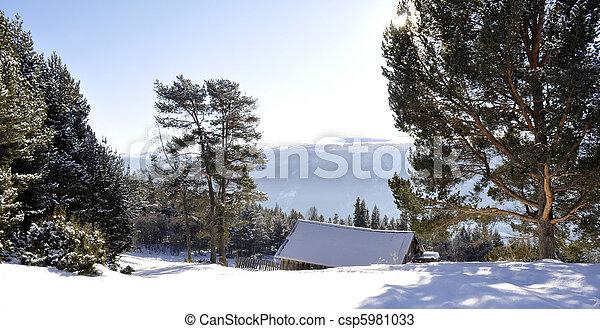winterlandscape - csp5981033