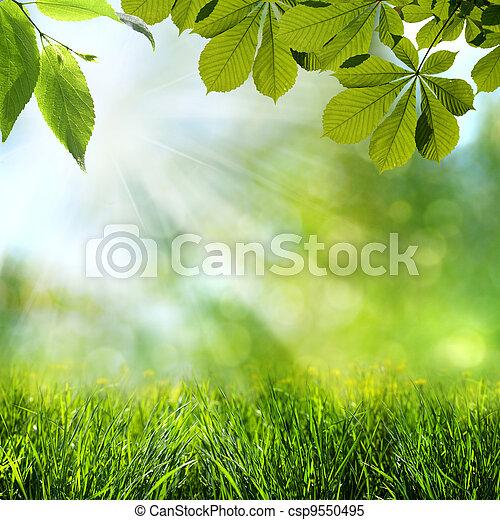 wiosna, abstrakcyjny, tła, lato - csp9550495