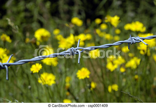 wire and flowers - csp0001409