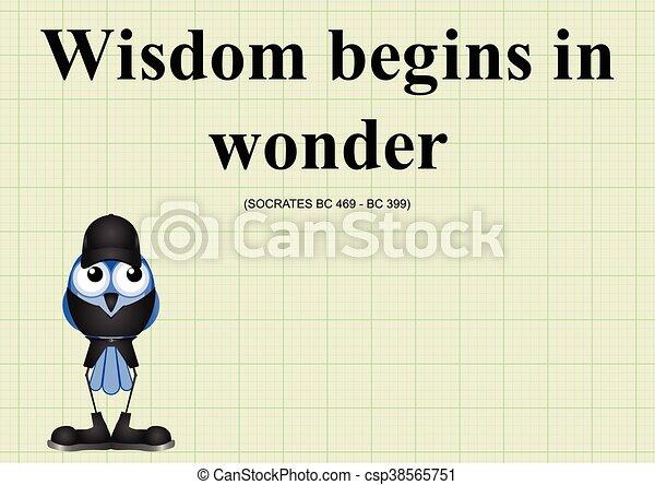 Wisdom begins in wonder - csp38565751