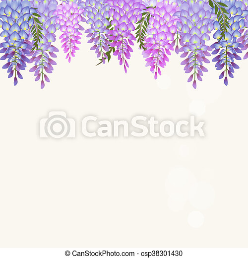 Wisteria Vines Picture Material, Wisteria, Flower Vine, Flowers PNG  Transparent Clipart Image and PSD File for Free Download | Purple flowers  wallpaper, Vine drawing, Flowering vines