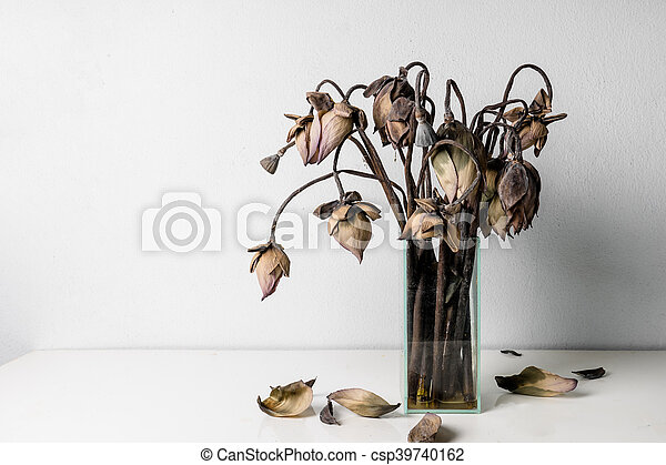 Withered lotus flowers in a glass vase on table - csp39740162