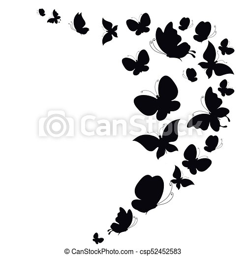 witte , black , vrijstaand, vlinder - csp52452583