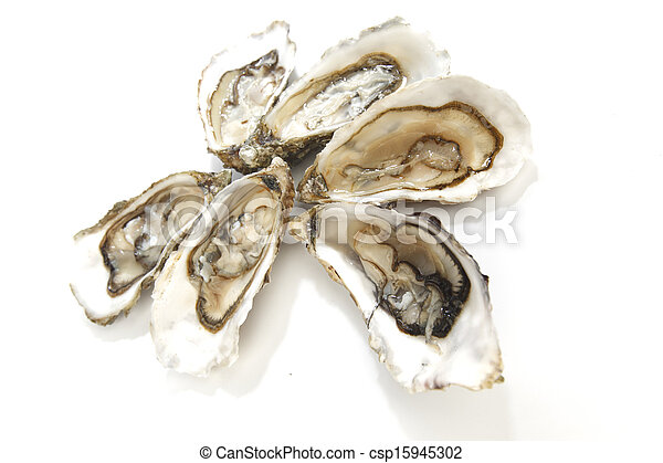witte , oesters - csp15945302