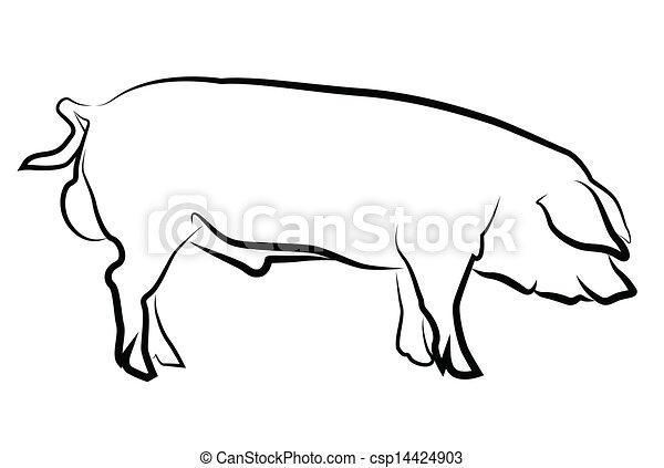 witte , silhouette, vrijstaand, varken - csp14424903