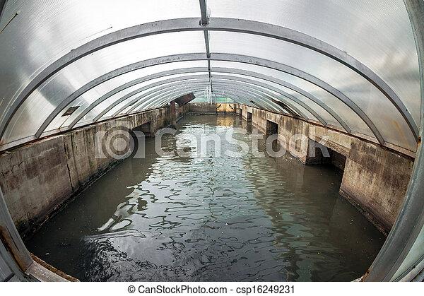 woda, czyszczenie, łatwość - csp16249231