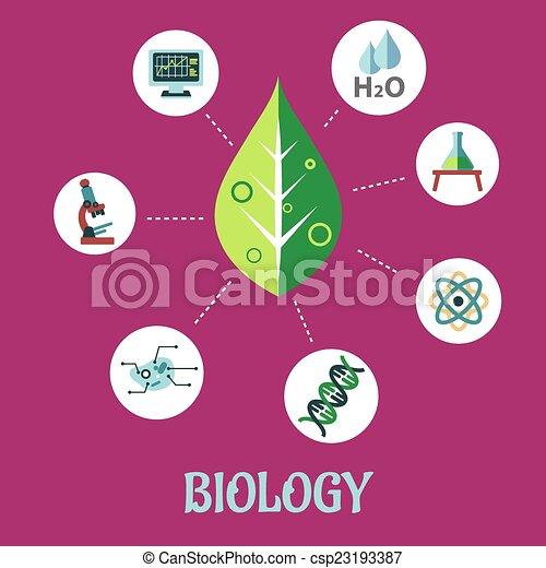 wohnung, biologie, begriff, design - csp23193387