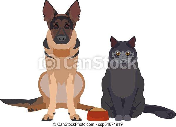 Wohnung Hund Abbildung Katz Wohnung Format Hund Abbildung