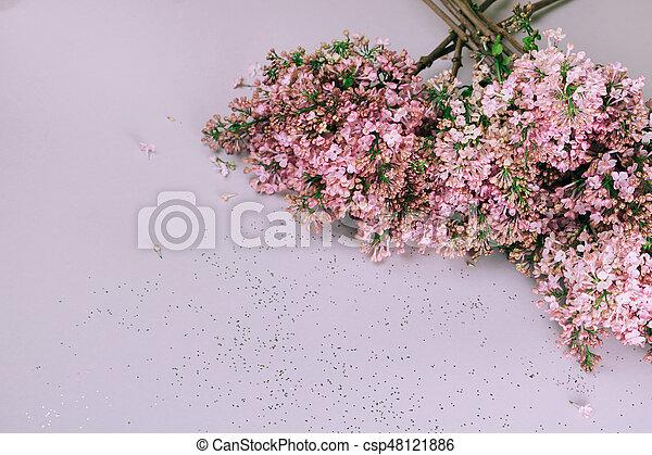 Gut Wohnung, Lila, Blumengebinde, Grau, Lay., Hintergrund   Csp48121886