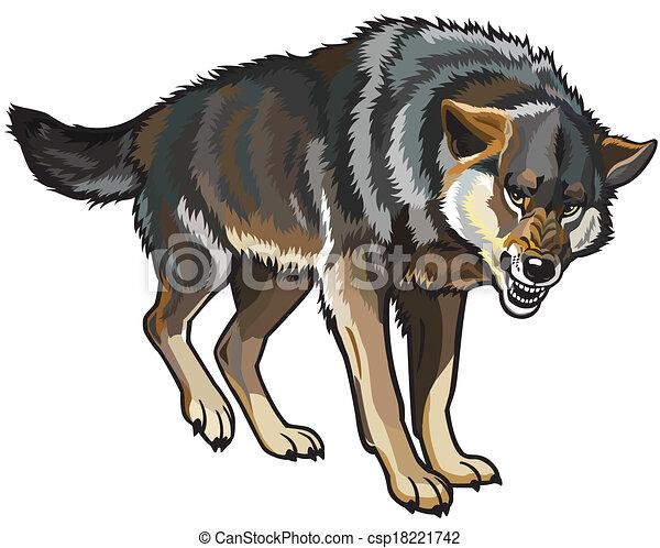 wolf - csp18221742