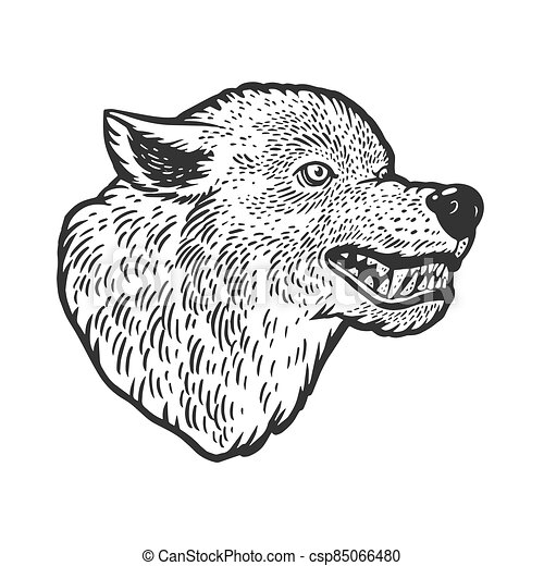 Wolf head tattoo sketch engraving vector illustration. T-shirt apparel print design. Scratch board imitation. Black and white hand drawn image. - csp85066480