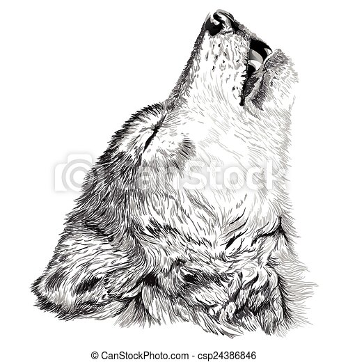 1233e1f06 Wolf howls sketch. Vector portrait of angry wolf face.