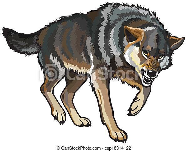 wolf - csp18314122