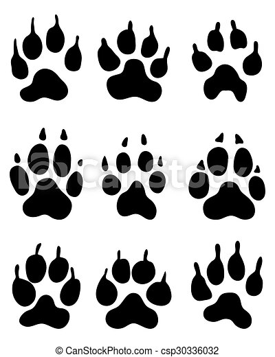 wolf paw - csp30336032