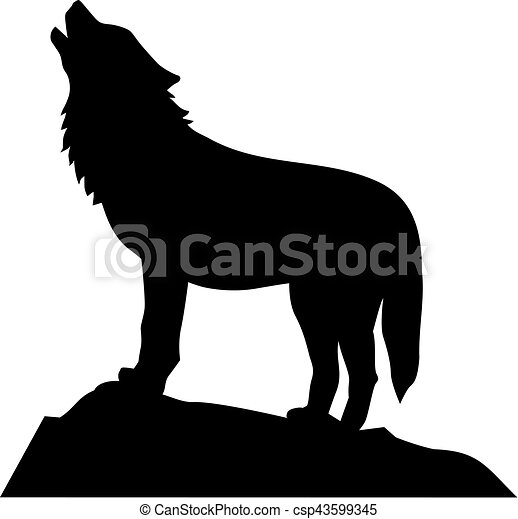 Wolf standing and howling - csp43599345