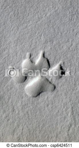 Wolf track - csp6424511
