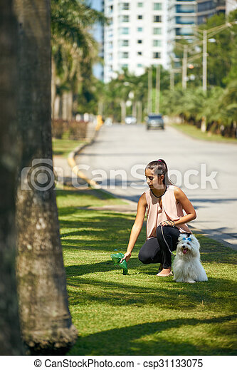 Woman Cleaning Droppings Of Her French Poodle Dog - csp31133075