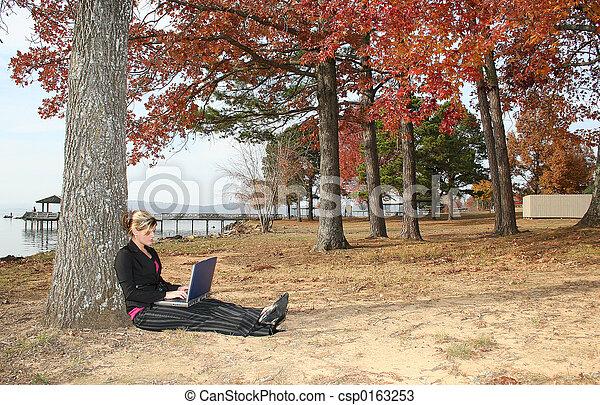Woman Computer Park - csp0163253