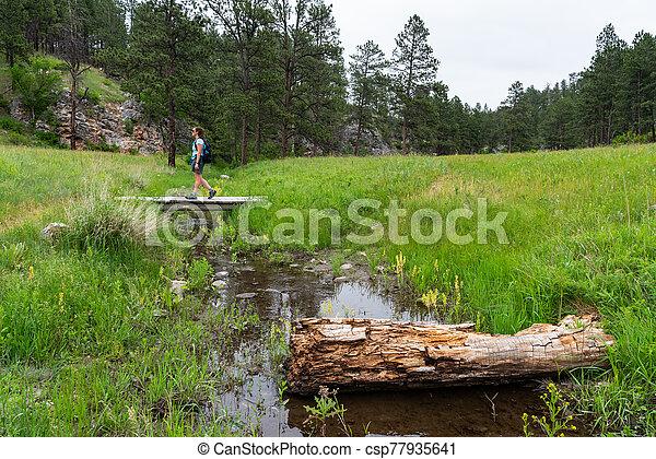 Woman Crosses Wooden Bridge Over Creek - csp77935641