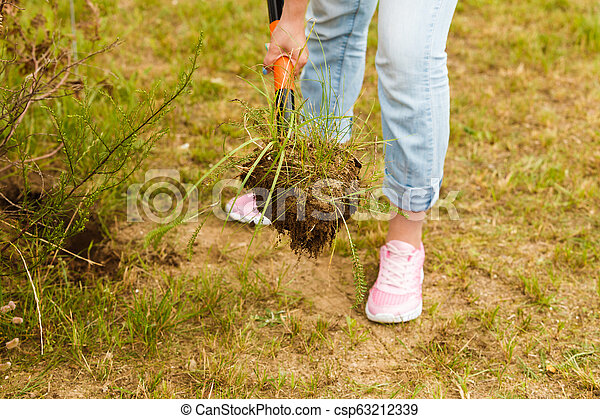 Woman digging hole in garden - csp63212339