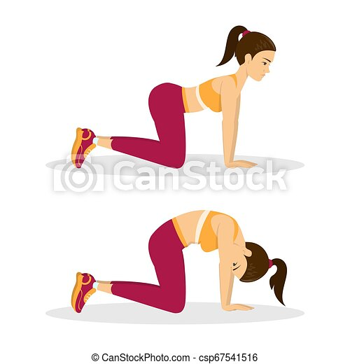 woman doing cat cow exercise back stretch in the gym