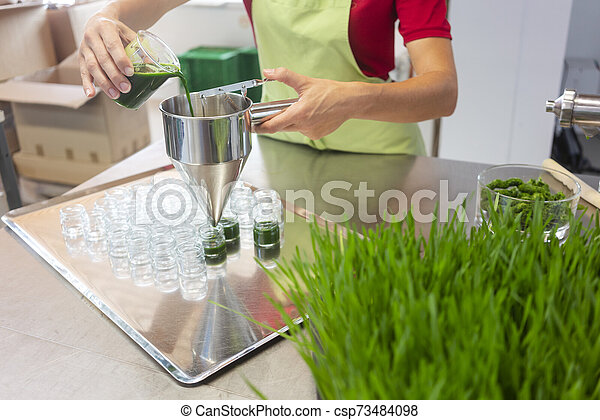 Woman filling wheatgrass smoothie in glasses - csp73484098