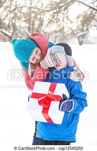 woman gives a Christmas present boy - csp12545202