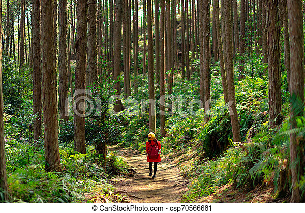 Woman in red trekking in forest - csp70566681