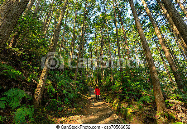 Woman in red trekking in forest - csp70566652