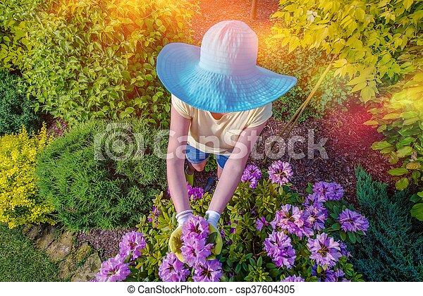 Woman in the Garden - csp37604305