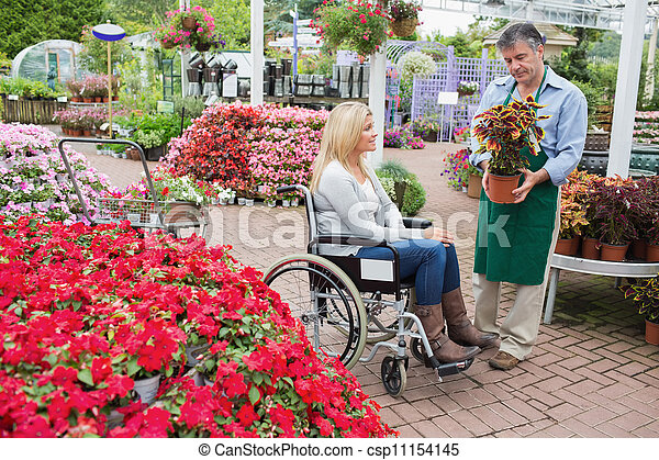 Woman in wheelchair buying a plant - csp11154145