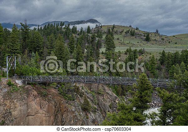 Woman Power Poses on Suspension Bridge - csp70603304